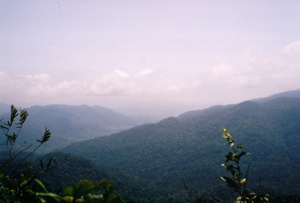View from summit of Gunung Angsi